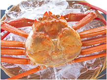 about_crab_11
